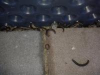 Červíci kolem domu prosím o pomoc