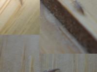 IKEA bug