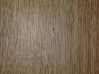 Prosím o identifikáciu hmyzu, môže sa jednať o ploštice?